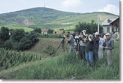 Bird watchers in Hungary
